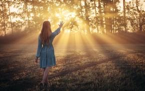 Picture girl, light, morning, fairy