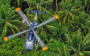 Picture jungle, flight, helicopter, blades, multipurpose, Eurocopter, EC145