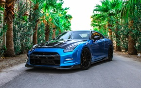 Picture Nissan, GT-R, Wheels, Strasse, Memes