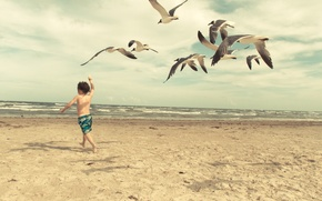 Picture wave, beach, seagulls, child, waves, beach, child, seagulls