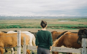 Picture field, the sky, girl, river, hills, the fence, back, wire, horse, sweater, rainy