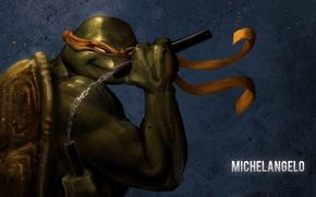 Wallpaper teenage mutant ninja turtles, nunchuck, Michelangelo