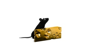 Picture mouse, cheese, mouse, art, tail