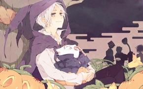 Wallpaper tree, anime, candy, pumpkin, Halloween, flowers, Natsume, Natsume Yuujinchou, U-Sensei, youkai, Natsume, The Natsume book ...