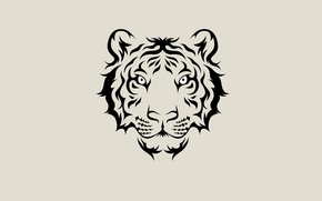 Picture face, tiger, minimalism, light background, tiger