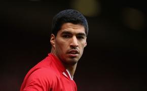 Wallpaper Sport, Football, Football, Liverpool, Liverpool, YNWA, Sport, Luis Suarez, Luis Suarez
