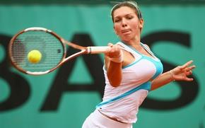 Picture tennis, ball, racket, Simona Halep