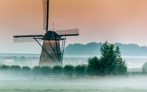 Picture trees, fog, morning, mill, wind