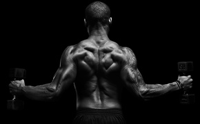 Picture man, muscular, back