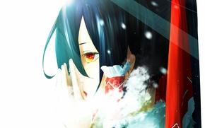 Picture cold, girl, snow, anime, art, fur, touhou, hakurei reimu, yugeoryouki
