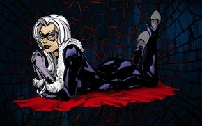 Picture web, Marvel Comics, Black Cat, Felicia Hardy