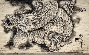 Picture wall, graffiti, dragon, Graffiti