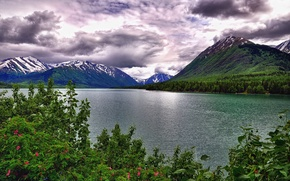 Picture the sky, clouds, trees, flowers, mountains, lake, the bushes