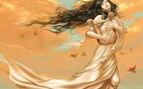 Wallpaper the sky, girl, dress, harp