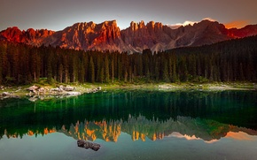 Picture forest, mountains, lake, morning