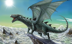 Picture Dragon, Wings, Fantasy