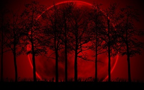 Wallpaper red, background, the moon, the darkness, black, Trees, gloom