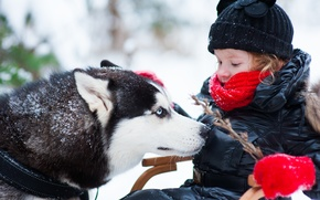 Picture winter, dog, girl, child, husky