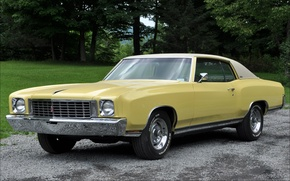 Picture yellow, Chevrolet, Chevrolet, chrome, Muscle car, 1972, Monte Carlo, Monte Carlo