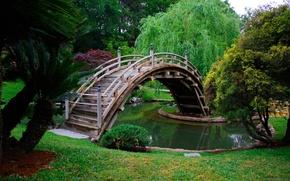 Picture water, trees, bridge, Park, grass.