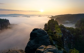 Picture forest, mountains, fog, rocks, dawn, Switzerland, the view from the top, Saxon