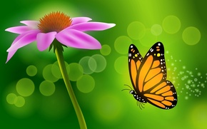 Picture flower, butterfly, vector