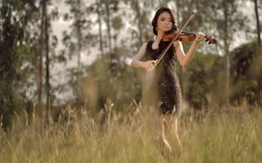 Picture field, summer, girl, music, violin