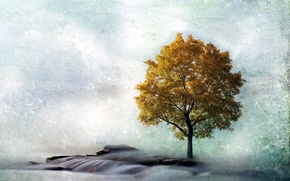 Picture landscape, style, tree