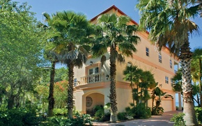 Picture the city, palm trees, Villa
