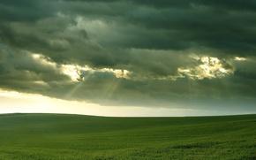Picture field, grass, clouds, light