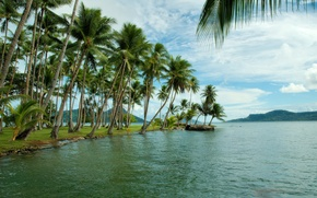 Picture sea, the sky, mountains, palm trees, island