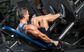 Wallpaper fitness, bodybuilder, exercise machine, bodybuilding