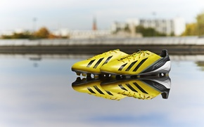 Picture Reflection, Yellow, Adidas, Adidas, Cleats, Shoes