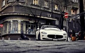 Picture Maserati, white, sports, white, GranTurismo, Maserati