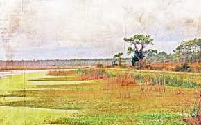 Picture landscape, nature, style