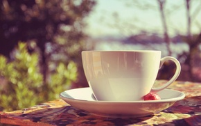 Picture mug, Cup, white, saucer