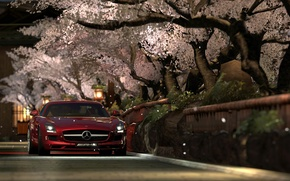 Picture Gran Turismo 5, Mercedes Benz SLS AMG, Photo Mode, Kyoto Shirakawa