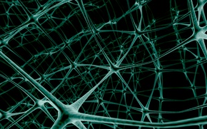Picture network, neurons, link