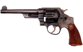 Picture style, revolver, drum, tree, year, Massachusetts, white, Army, weapons, metal, Style, caliber, Smith Wesson, the ...