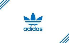 Picture strip, blue, logo, logo, Adidas, adidas, firm