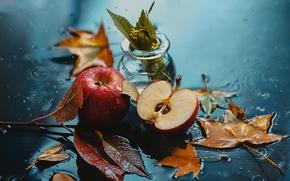 Picture autumn, leaves, drops, apples