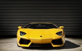 Picture Lamborghini, front, view, Aventador, LP 700-4