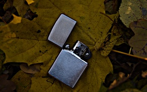 Picture leaves, nature, yellow, lighter, zippo