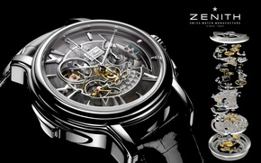 Picture watch, mechanism, Watch, Zenith