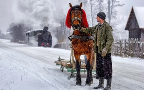 Picture winter, horse, man, time, winter, in the depths of, once