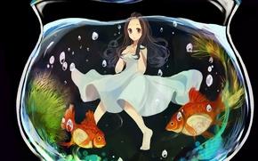 Picture bubbles, aquarium, goldfish, Girl, white dress