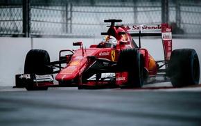 Picture Ferrari, the car, Formula 1, Sebastian Vettel, 2015, SF15-T