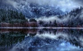 Picture winter, snow, nature, fog, lake