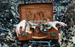 Picture background, hands, suitcase