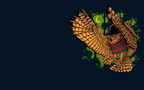 Picture background, owl, bird, Freddy Krueger, Freddy Krueger